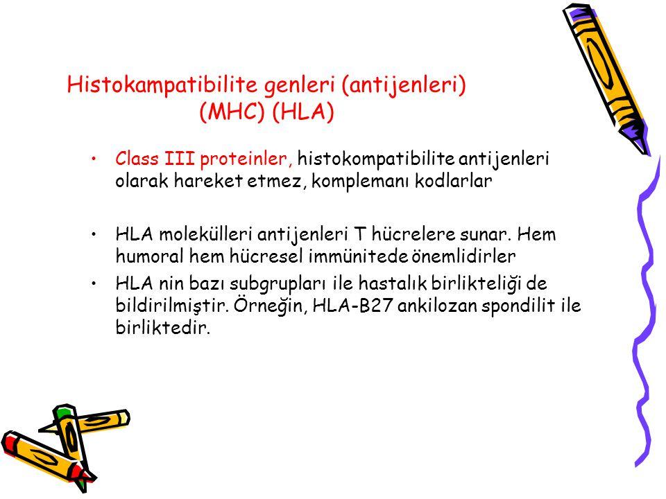 Histokampatibilite genleri (antijenleri) (MHC) (HLA) Class III proteinler, histokompatibilite antijenleri olarak hareket etmez, komplemanı kodlarlar H