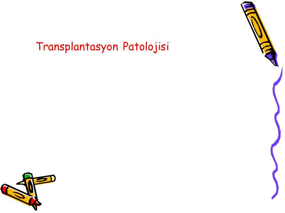 Transplantasyon Patolojisi