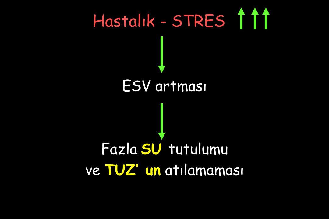 Hastalık - STRES ESV artması Fazla SU tutulumu ve TUZ' un atılamaması
