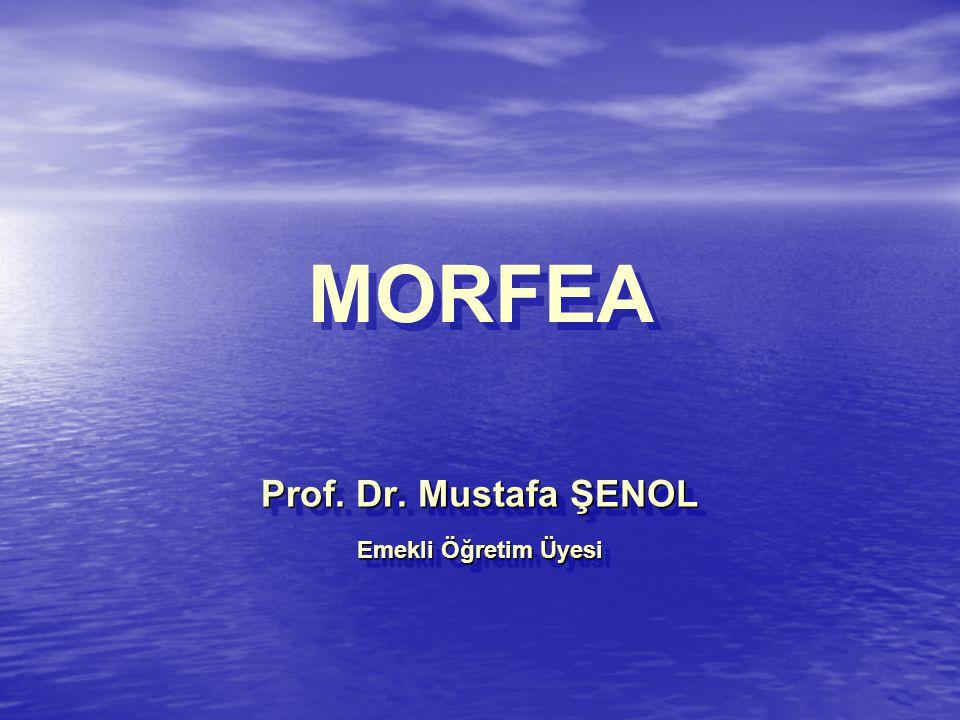MORFEA Prof. Dr. Mustafa ŞENOL Emekli Öğretim Üyesi Prof. Dr. Mustafa ŞENOL Emekli Öğretim Üyesi