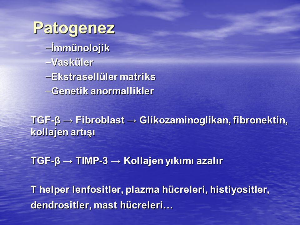 Patogenez – İmmünolojik – Vasküler – Ekstrasellüler matriks – Genetik anormallikler TGF-β → Fibroblast → Glikozaminoglikan, fibronektin, kollajen artışı TGF-β → TIMP-3 → Kollajen yıkımı azalır T helper lenfositler, plazma hücreleri, histiyositler, dendrositler, mast hücreleri…