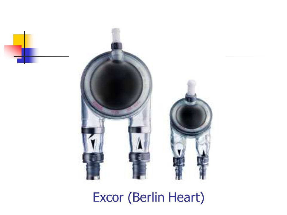 Excor (Berlin Heart)