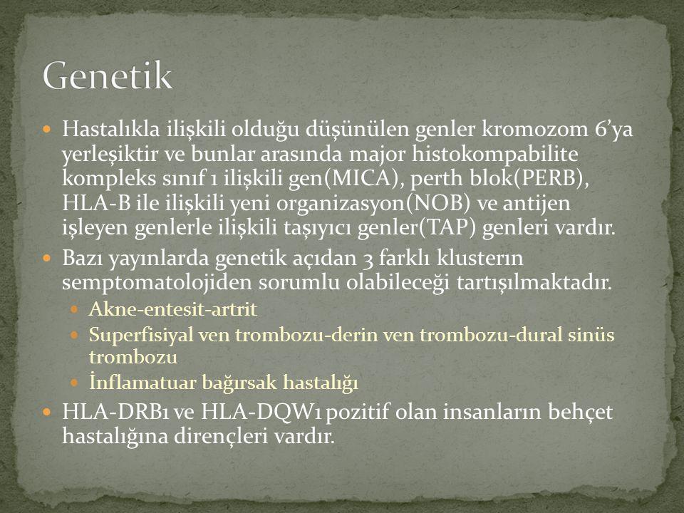 Hastalıkla ilişkili olduğu düşünülen genler kromozom 6'ya yerleşiktir ve bunlar arasında major histokompabilite kompleks sınıf 1 ilişkili gen(MICA), p