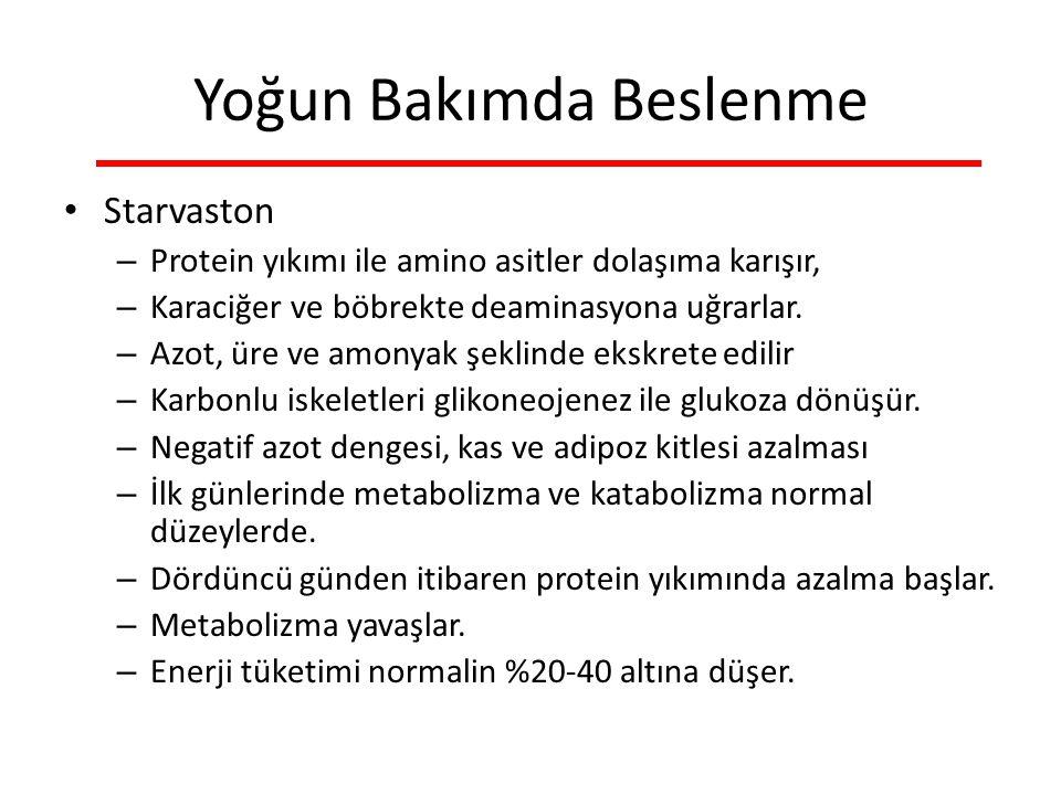 Yoğun Bakımda Beslenme Starvaston – Protein yıkımı ile amino asitler dolaşıma karışır, – Karaciğer ve böbrekte deaminasyona uğrarlar.