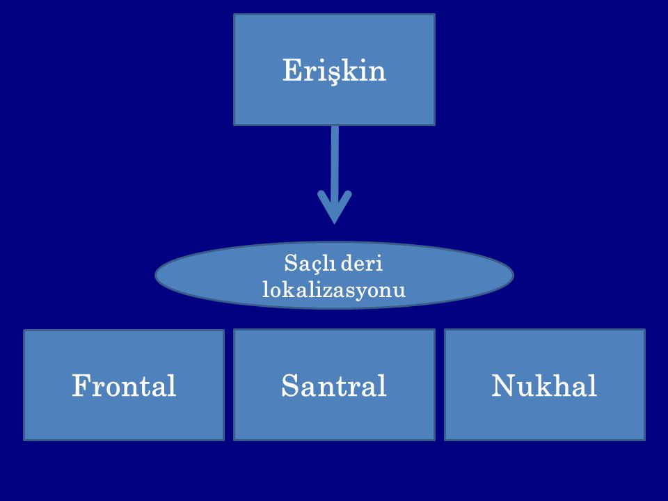 Saçlı deri lokalizasyonu Erişkin Frontal Nukhal Santral