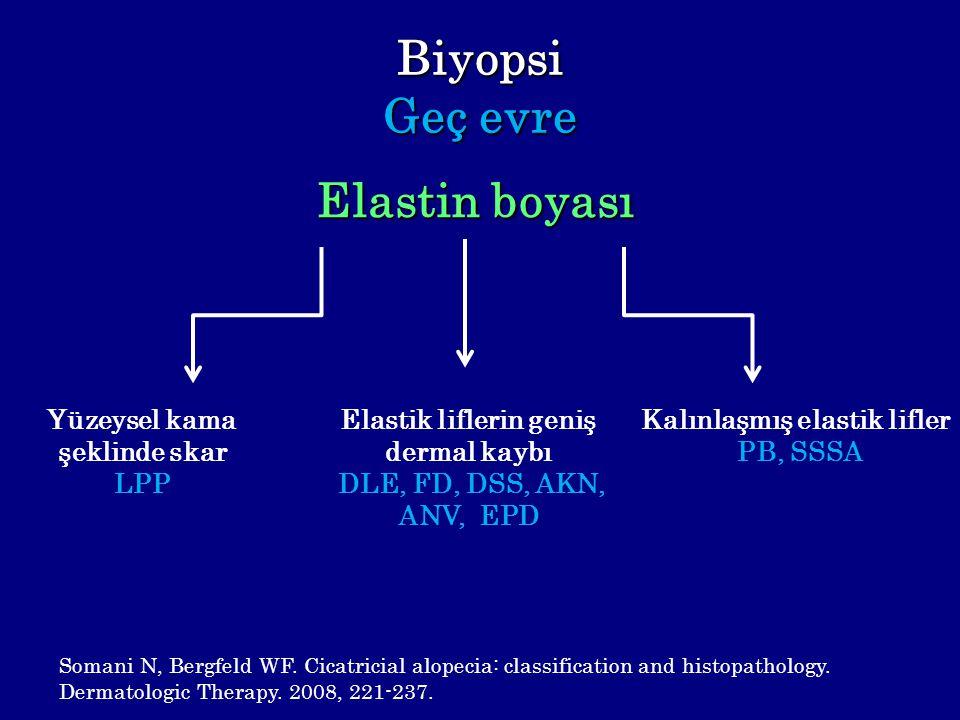 Biyopsi Geç evre Elastin boyası Yüzeysel kama şeklinde skar LPP Elastik liflerin geniş dermal kaybı DLE, FD, DSS, AKN, ANV, EPD Kalınlaşmış elastik li