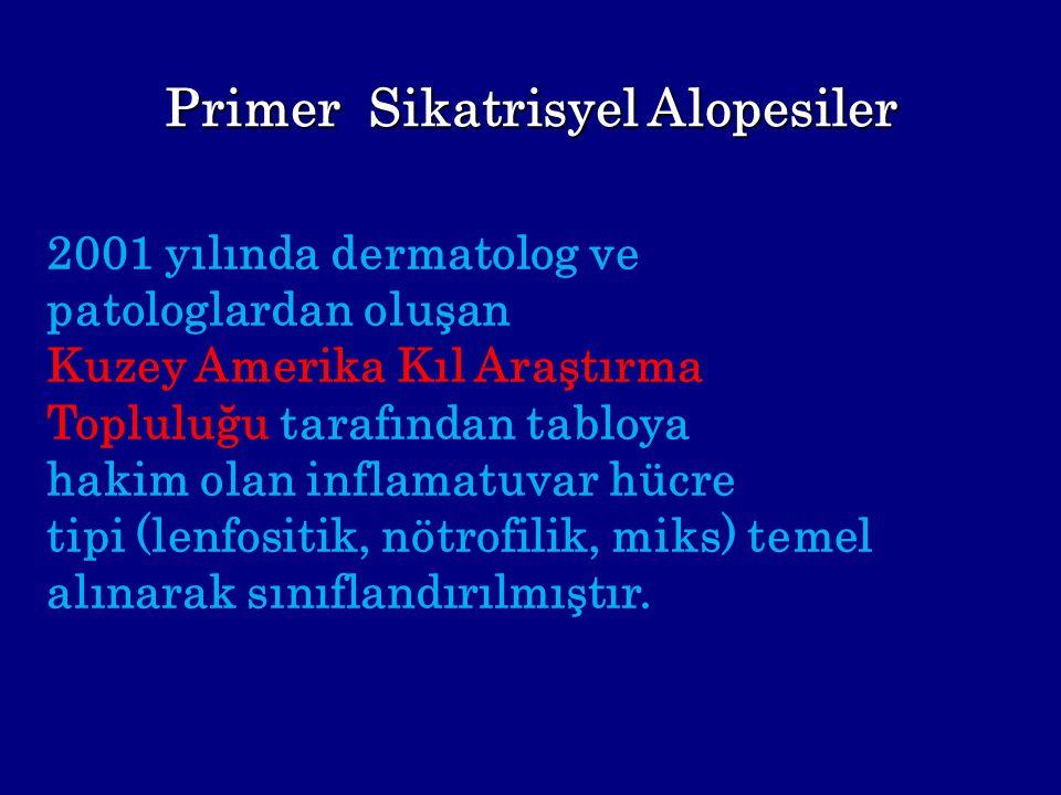 Primer Sikatrisyel Alopesiler 2001 yılında dermatolog ve patologlardan oluşan Kuzey Amerika Kıl Araştırma Topluluğu tarafından tabloya hakim olan infl