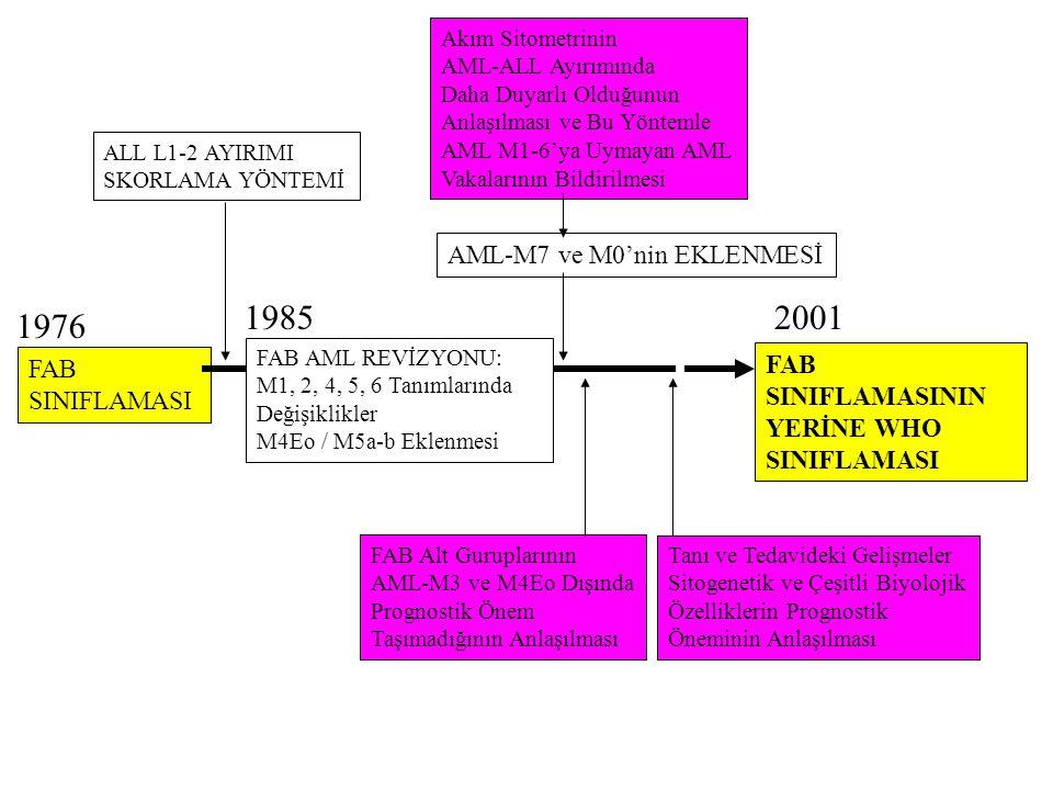 FAB SINIFLAMASI FAB SINIFLAMASININ YERİNE WHO SINIFLAMASI Akım Sitometrinin AML-ALL Ayırımında Daha Duyarlı Olduğunun Anlaşılması ve Bu Yöntemle AML M1-6'ya Uymayan AML Vakalarının Bildirilmesi FAB Alt Guruplarının AML-M3 ve M4Eo Dışında Prognostik Önem Taşımadığının Anlaşılması AML-M7 ve M0'nin EKLENMESİ Tanı ve Tedavideki Gelişmeler Sitogenetik ve Çeşitli Biyolojik Özelliklerin Prognostik Öneminin Anlaşılması 1976 19852001 ALL L1-2 AYIRIMI SKORLAMA YÖNTEMİ FAB AML REVİZYONU: M1, 2, 4, 5, 6 Tanımlarında Değişiklikler M4Eo / M5a-b Eklenmesi