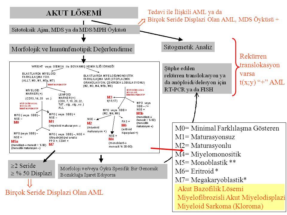 Tedavi ile İlişkili AML ya da Birçok Seride Displazi Olan AML, MDS Öyküsü + Rekürren translokasyon varsa t(x;y) + AML Birçok Seride Displazi Olan AML  M0= Minimal Farklılaşma Gösteren M1= Maturasyonsuz M2= Maturasyonlu M4= Miyelomonositik M5= Monoblastik ** M6= Eritroid * M7= Megakaryoblastik* Akut Bazofilik Lösemi Miyelofibrozisli Akut Miyelodisplazi Miyeloid Sarkoma (Kloroma)  Akut Bazofilik Lösemi Miyelofibrozisli Akut Miyelodisplazi Miyeloid Sarkoma (Kloroma)  2 Seride  % 50 Displazi