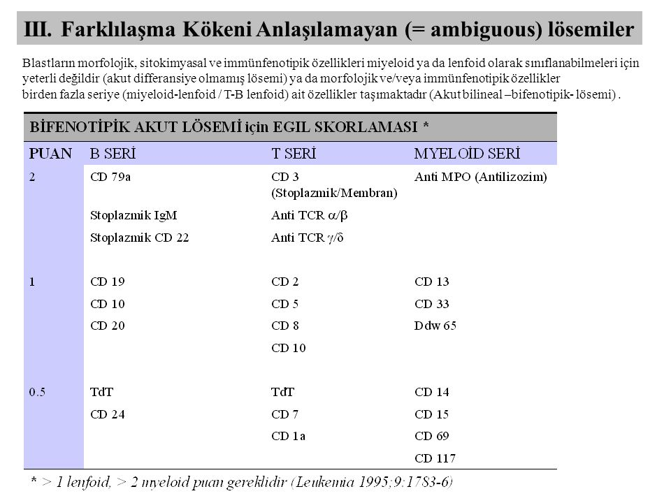 III. Farklılaşma Kökeni Anlaşılamayan (= ambiguous) lösemiler Blastların morfolojik, sitokimyasal ve immünfenotipik özellikleri miyeloid ya da lenfoid
