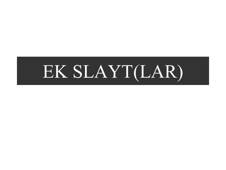 EK SLAYT(LAR)
