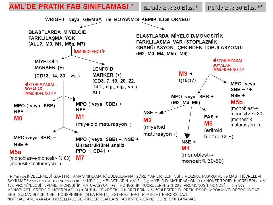 ALL'nin İMMÜNOLOJİK SINIFLAMASI Pro-B ALL (B-I): Yukarıdakiler dışında ekspresyon yok (% 11) Common ALL (B-II): CD 10 + (% 51) Pre-B ALL (B-III): CD 10 +/- ; stoplazmik Ig M + (% 10) Matür B ALL (B-IV): CD 10 +/- ; yüzey IgM+ ya da yüzey ya da stoplazmik hafif zincir (kappa ya da lambda) pozitif (% 4) Burkitt ALL (matür B ALL) aşağıdaki gibi tanımlanır: 1) L3 morfolojisi, veya 2) karekteristik sitogenetik translokasyonların [t(8;14)(q24;q32)/ t(2;8)(p12;q24)/ t(8;22)(q24;q11)] ya da sitogenetik verisi olmayan vakalarda moleküler analizde c-myc yenidiziliminin varlığı; ve 3) > % 20 sIg pozitifliği ya da CD19 veya CD20 ile birlikte klonal  hafif zincir ekspresyonu (J Clin Oncol 1999;17:2461).