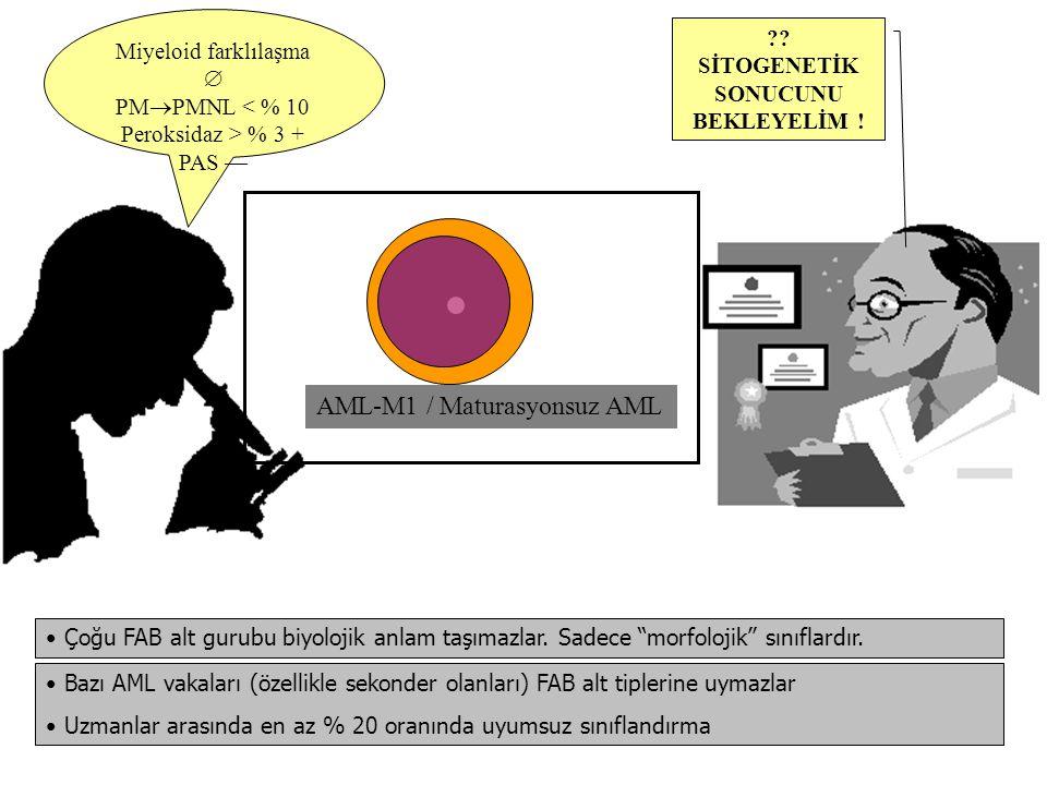 AML-M3 / APL Sık pansitopeni Koagülopati Organomegali  ATRA İyi prognoz, Transplant gerekmez Blast+atipik PMler > % 30 Sultan hücresi HLA-DR — T (15;17) ya da varyantları FAB ALT TİPİ EŞLİK EDEN KROMOZOMAL BOZUKLUK BOZUKLUĞUN SIKLIĞIPROGNOZ AML-M3t(15;17)(q22;q11-12)% 90-100İyi AML-M4Eoinv(16)(q13;q22) veya t(16;16)(p13;q22) % 30-100İyi AML-M2t(8;21)(q22;q22)% 18-20İyi AML-M511q23% 5-10Kötü