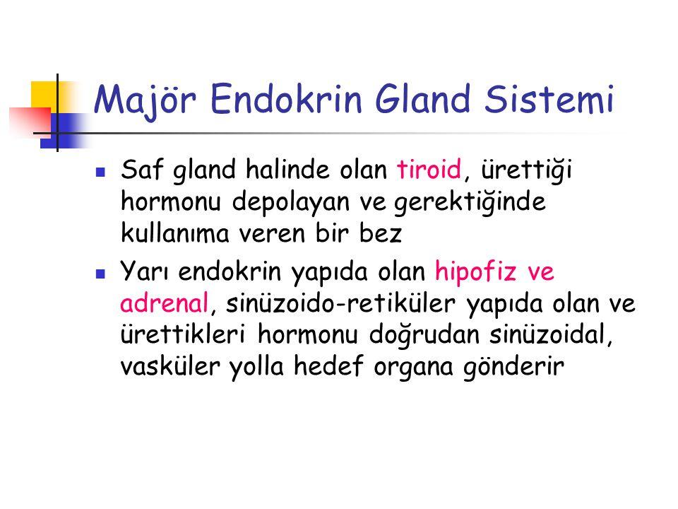 Majör Endokrin Gland Sistemi Saf gland halinde olan tiroid, ürettiği hormonu depolayan ve gerektiğinde kullanıma veren bir bez Yarı endokrin yapıda ol