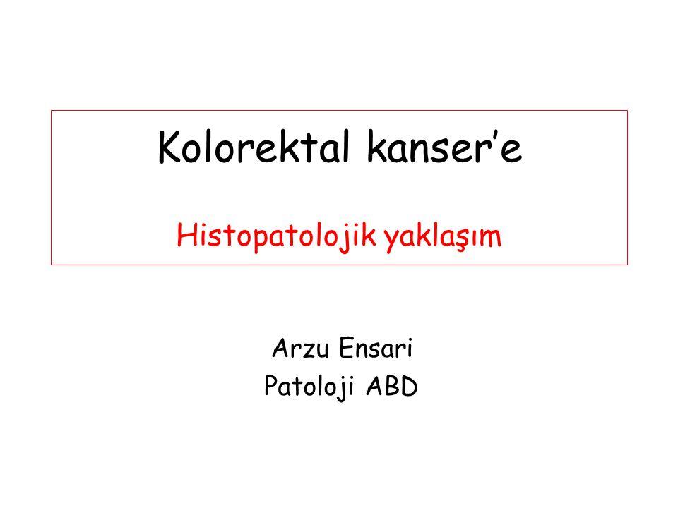 Adenoma-Karsinoma Sekansı Aberran kript foküsü Hiperplastik / Displastik Unikriptal adenom Adenom (TA/TVA/VA/SA...) Hafif displazi / Orta şiddette displazi / Ağır displazi / Kanserleşme Adenokarsinom