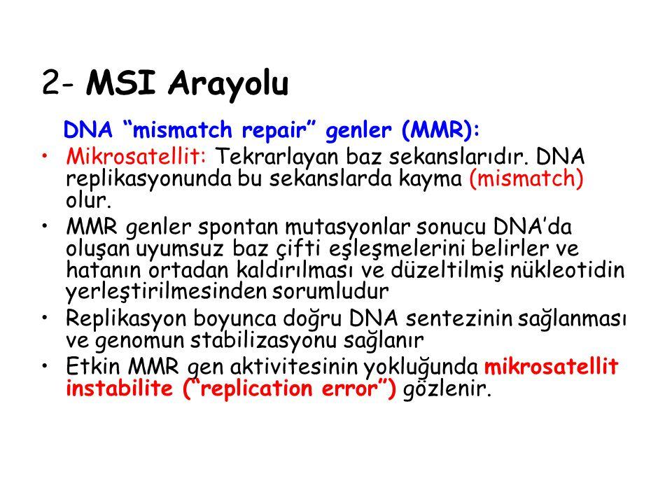 2- MSI Arayolu MSI gösteren tümörler; *Proksimal kolonda lokalize *Genellikle musinöz veya andiferansiye özellikte *Stromalarında belirgin lenfositik infiltrasyon *Mikrosatellit stabil tm.e göre daha iyi prognoz Bu tm.lerde bazı gen mutasyonlarının daha sık bulunduğu belirlenmiştir.