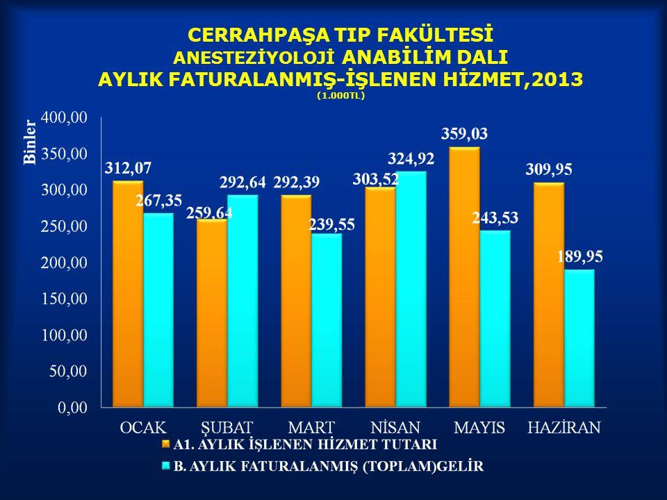 CERRAHPAŞA TIP FAKÜLTESİ ANESTEZİYOLOJİ ANABİLİM DALI AYLIK FATURALANMIŞ-İŞLENEN HİZMET,2013 (1.000TL)