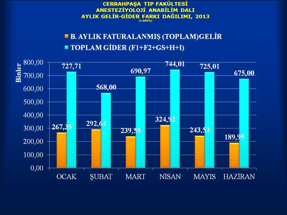 CERRAHPAŞA TIP FAKÜLTESİ ANESTEZİYOLOJİ ANABİLİM DALI AYLIK GELİR-GİDER FARKI DAĞILIMI, 2013 (1.000TL)