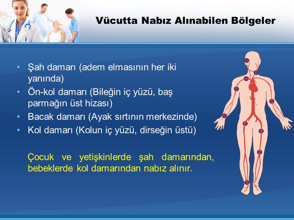 Vücutta Nabız Alınabilen Bölgeler Şah damarı (adem elmasının her iki yanında) Ön-kol damarı (Bileğin iç yüzü, baş parmağın üst hizası) Bacak damarı (A