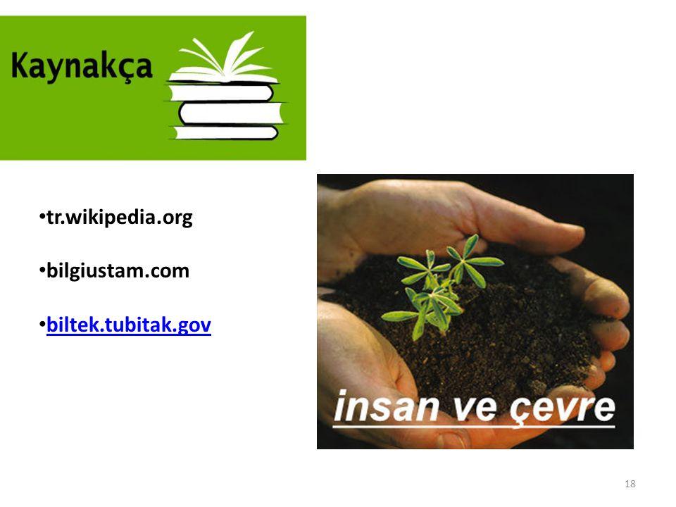 18 tr.wikipedia.org bilgiustam.com biltek.tubitak.gov