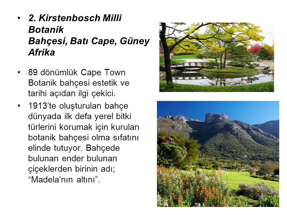 2. Kirstenbosch Milli Botanik Bahçesi, Batı Cape, Güney Afrika 89 dönümlük Cape Town Botanik bahçesi estetik ve tarihi açıdan ilgi çekici. 1913'te olu