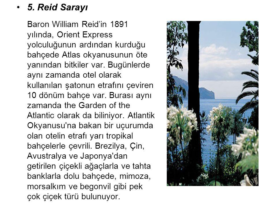 5. Reid Sarayı Baron William Reid'in 1891 yılında, Orient Express yolculuğunun ardından kurduğu bahçede Atlas okyanusunun öte yanından bitkiler var. B