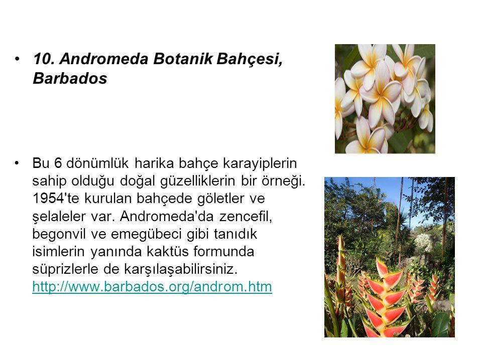 10. Andromeda Botanik Bahçesi, Barbados Bu 6 dönümlük harika bahçe karayiplerin sahip olduğu doğal güzelliklerin bir örneği. 1954'te kurulan bahçede g
