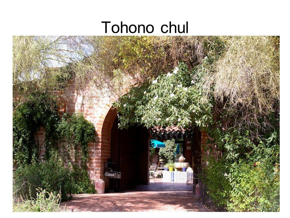 Tohono chul