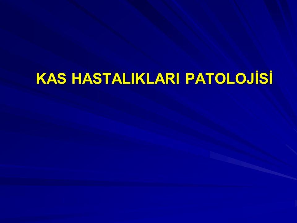 1.KAS ATROFİSİ 2.