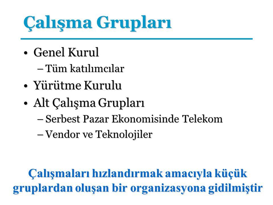 Çalışma Grupları Genel KurulGenel Kurul –Tüm katılımcılar Yürütme KuruluYürütme Kurulu Alt Çalışma GruplarıAlt Çalışma Grupları –Serbest Pazar Ekonomi