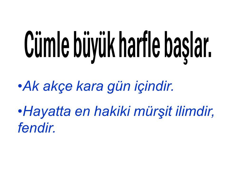 Atatürk, Muhtaç olduğun kudret, damarlarındaki asil kanda mevcuttur! diyor.