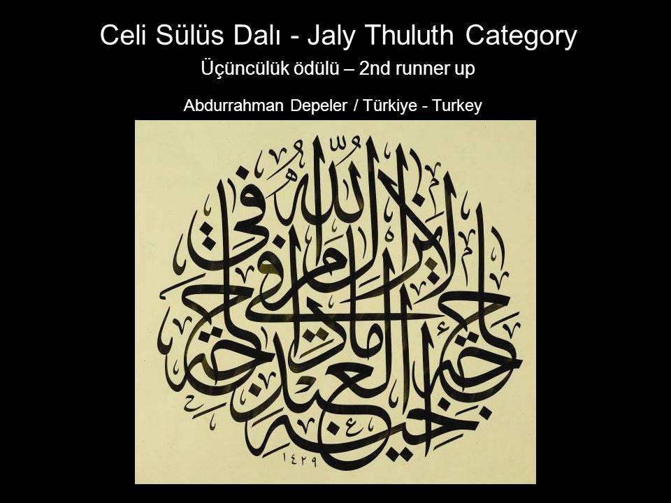 Üçüncülük ödülü – 2nd runner up Abdurrahman Depeler / Türkiye - Turkey