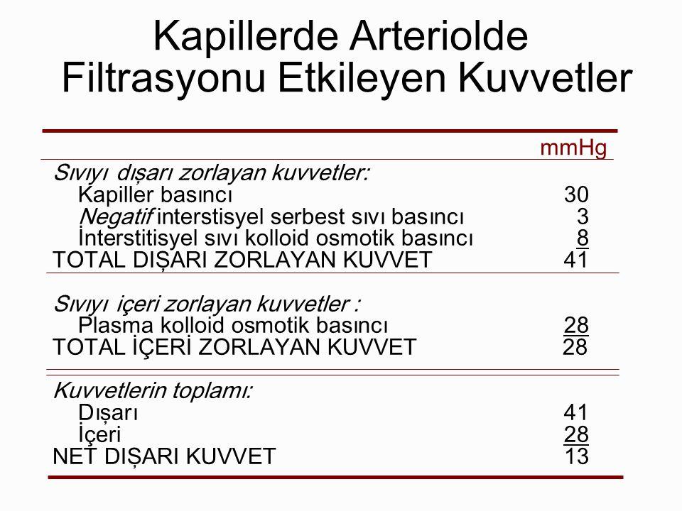 Kapillerde Arteriolde Filtrasyonu Etkileyen Kuvvetler Sıvıyı dışarı zorlayan kuvvetler: Kapiller basıncı30 Negatif interstisyel serbest sıvı basıncı3