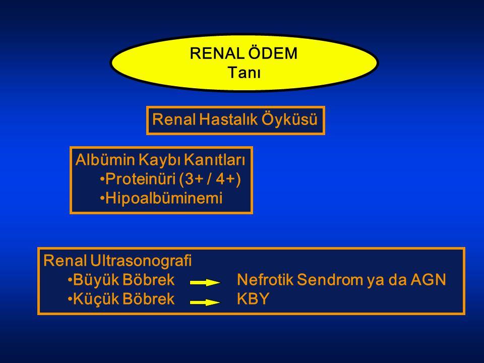 RENAL ÖDEM Tanı Renal Hastalık Öyküsü Albümin Kaybı Kanıtları Proteinüri (3+ / 4+) Hipoalbüminemi Renal Ultrasonografi Büyük Böbrek Nefrotik Sendrom y