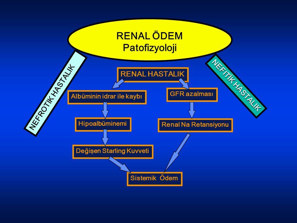 RENAL ÖDEM Patofizyoloji RENAL HASTALIK Albüminin idrar ile kaybı GFR azalması Hipoalbüminemi Değişen Starling Kuvveti Sistemik Ödem Renal Na Retansiy