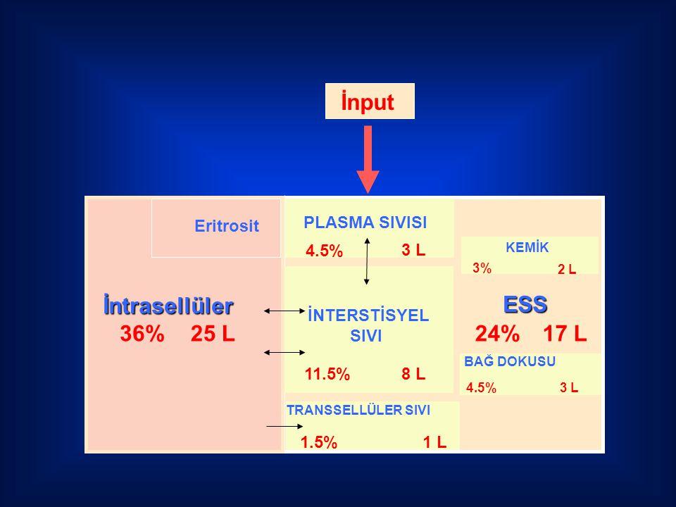 İntrasellüler 36%25 L ESS 24%17 L Eritrosit BAĞ DOKUSU 4.5%3 L KEMİK 3% 2 L İNTERSTİSYEL SIVI 11.5%8 L PLASMA SIVISI 4.5% 3 L TRANSSELLÜLER SIVI 1.5%1