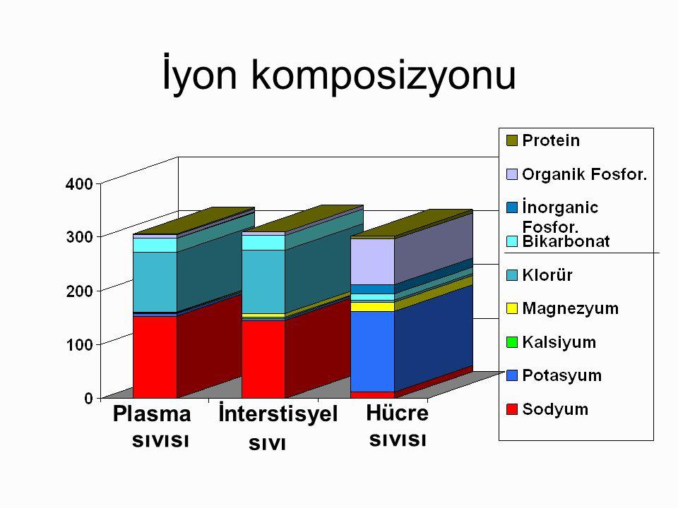 Major Ekstrasellüler Sıvı Bölümleri (ESS'nın 11L ) Plazma (kan eksi eritrosit ve lökosit) –70 Kg erkekte ~3 L –Vücut ağırlığının ~ % 4.5 İnterstisyel sıvı (hücreler arasında) –70 Kg erkekte ~8 L –Vücut ağırlığının ~ % 11.5