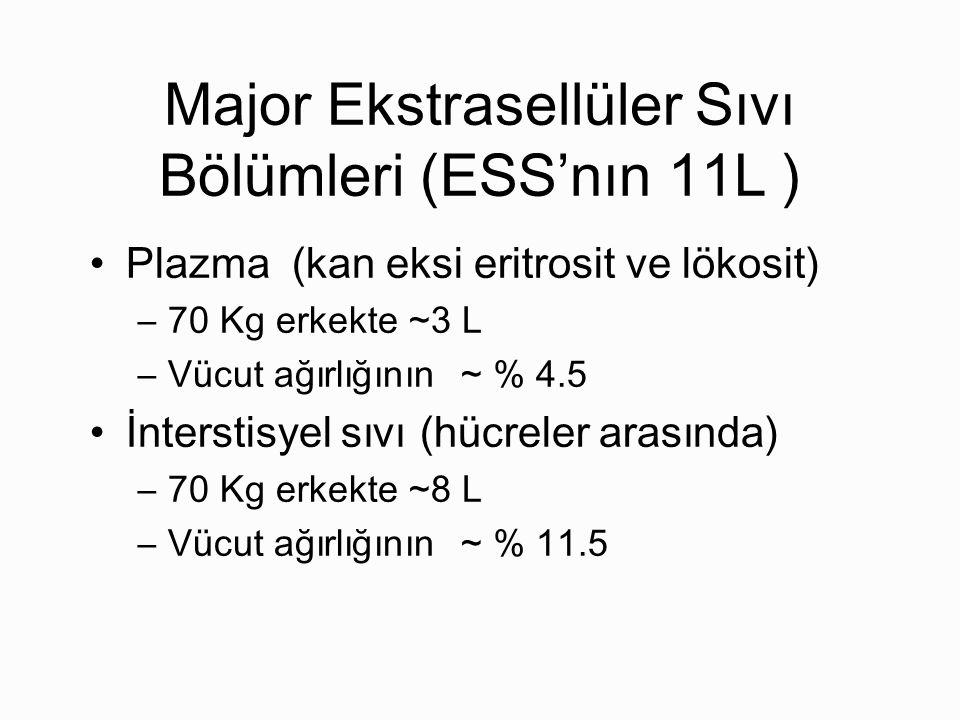 Major Ekstrasellüler Sıvı Bölümleri (ESS'nın 11L ) Plazma (kan eksi eritrosit ve lökosit) –70 Kg erkekte ~3 L –Vücut ağırlığının ~ % 4.5 İnterstisyel