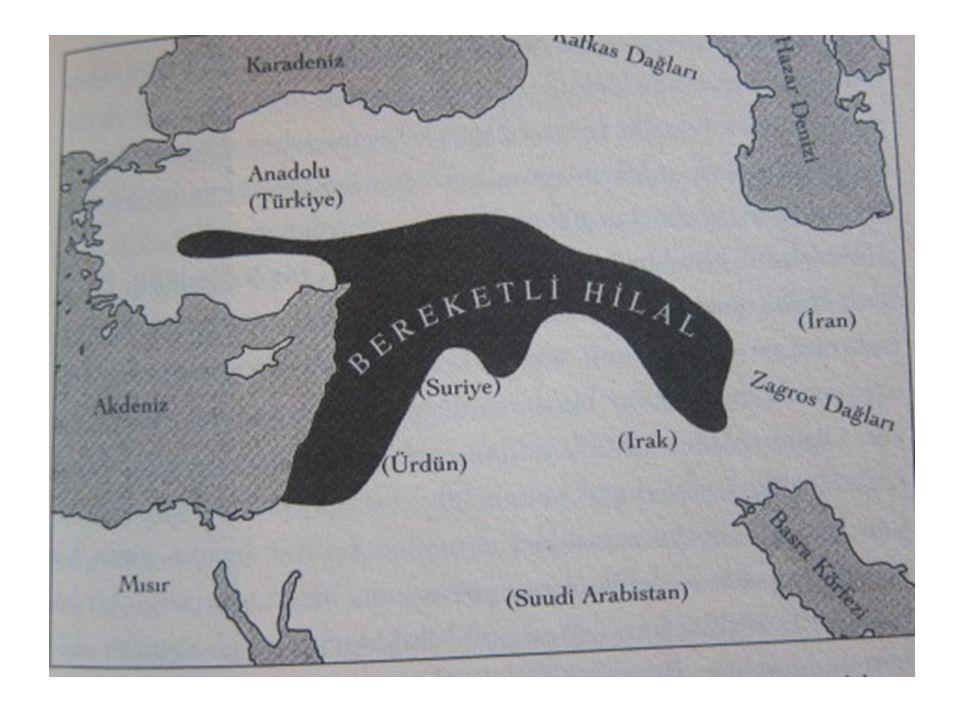 Bereketli Hilal M.Ö.8500 Batı Avrasya Kuzey Afrika M.Ö.