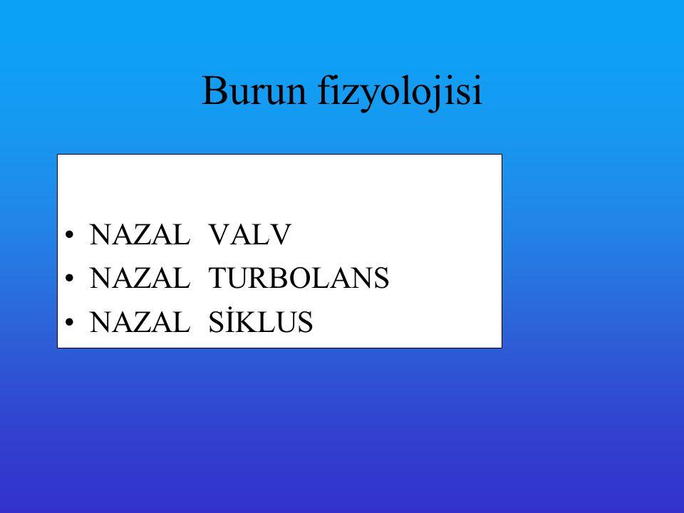 NAZAL VALV Nazal valf üst lateral kartilajın kaudal ucu ile septum arasındaki açıdır ve nasal havayolunun en dar yerini oluşturur