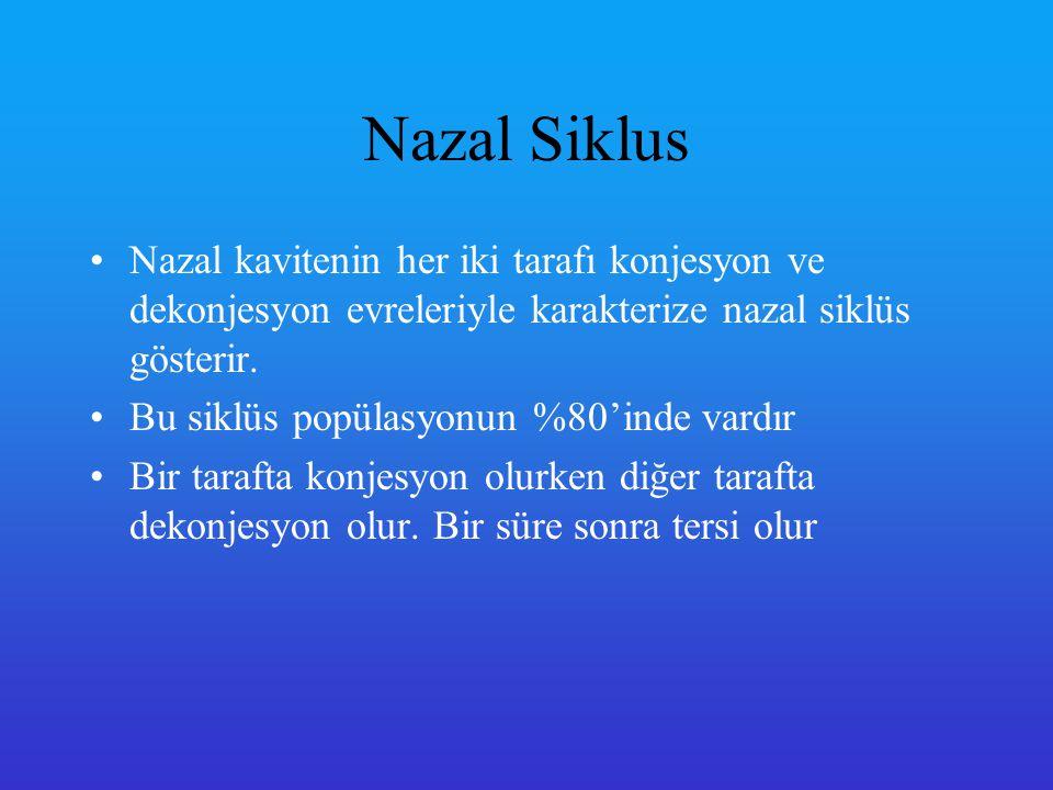 Nazo-silier akım Mukosilyer fonksiyon solunum sistemini korur.