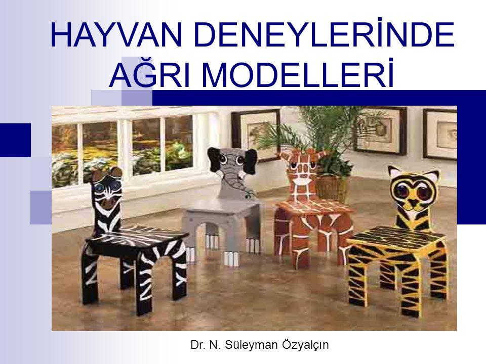 HAYVAN DENEYLERİNDE AĞRI MODELLERİ Dr. N. Süleyman Özyalçın