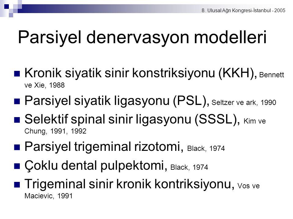 8. Ulusal Ağrı Kongresi-İstanbul - 2005 Parsiyel denervasyon modelleri Kronik siyatik sinir konstriksiyonu (KKH), Bennett ve Xie, 1988 Parsiyel siyati