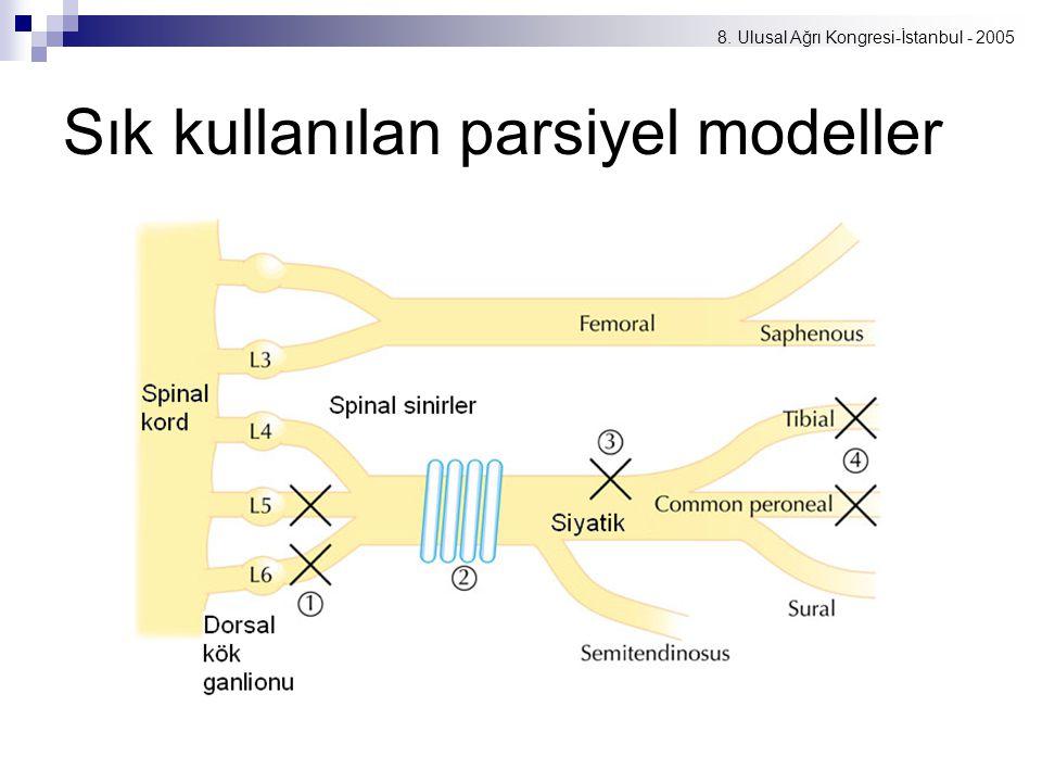 8. Ulusal Ağrı Kongresi-İstanbul - 2005 Sık kullanılan parsiyel modeller