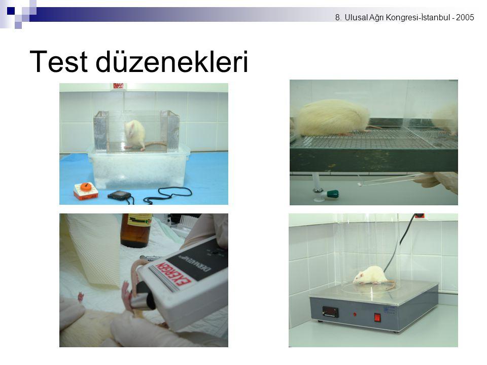 8. Ulusal Ağrı Kongresi-İstanbul - 2005 Test düzenekleri