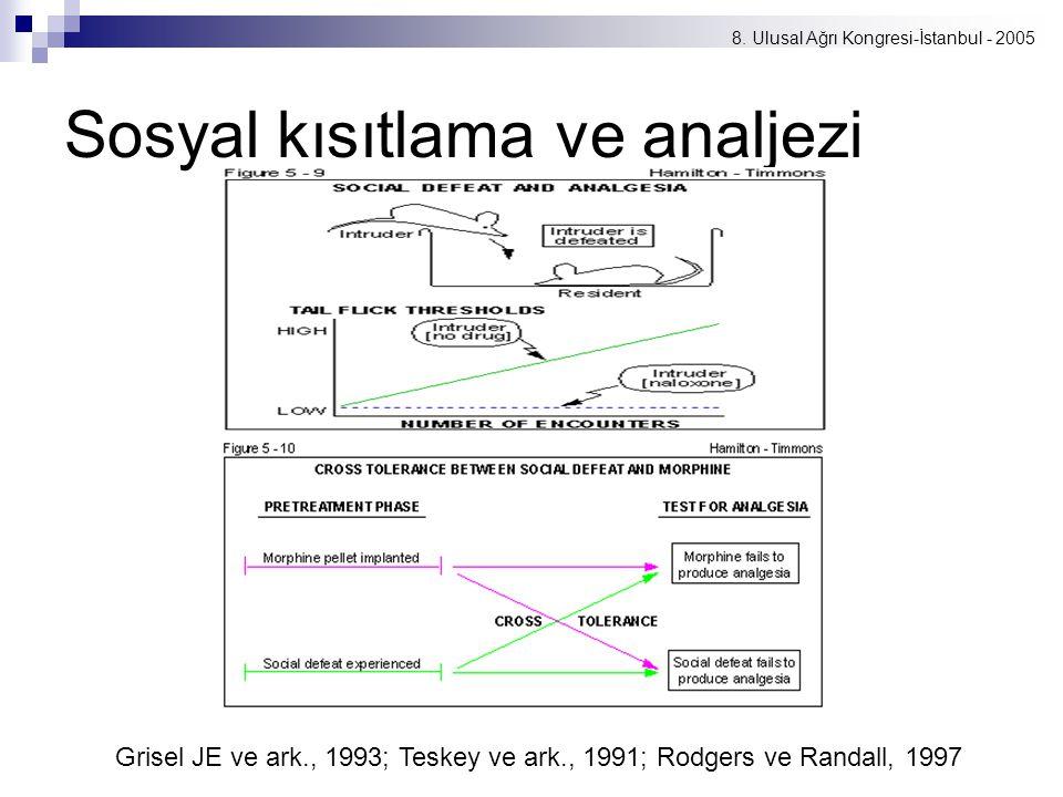 8. Ulusal Ağrı Kongresi-İstanbul - 2005 Sosyal kısıtlama ve analjezi Grisel JE ve ark., 1993; Teskey ve ark., 1991; Rodgers ve Randall, 1997