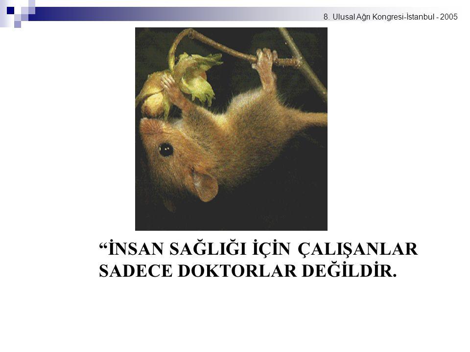 """8. Ulusal Ağrı Kongresi-İstanbul - 2005 """"İNSAN SAĞLIĞI İÇİN ÇALIŞANLAR SADECE DOKTORLAR DEĞİLDİR."""
