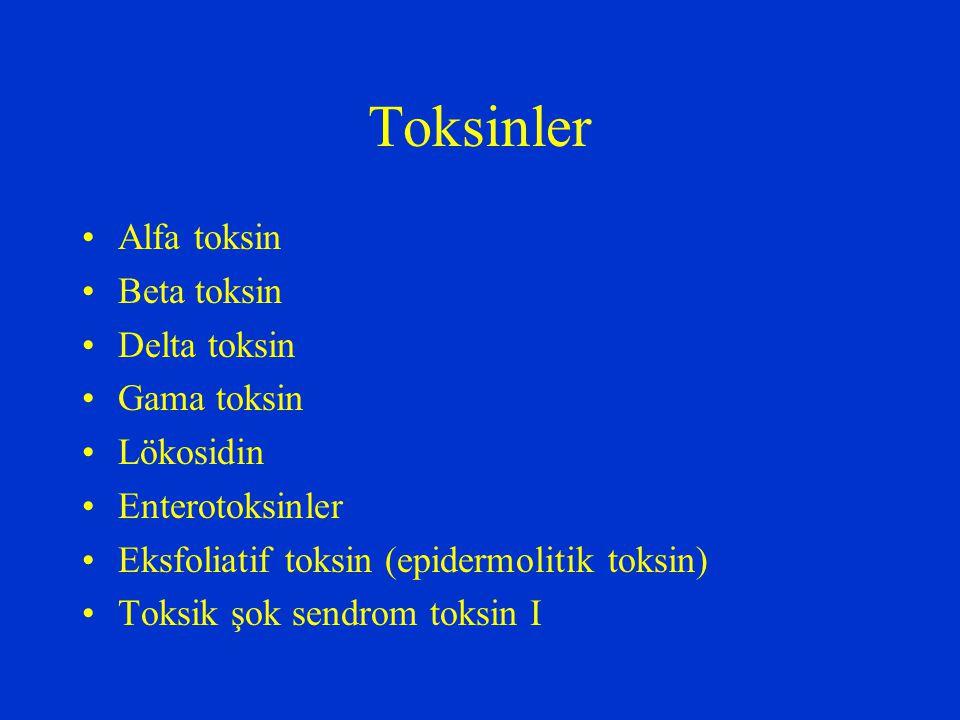 Toksinler Alfa toksin Beta toksin Delta toksin Gama toksin Lökosidin Enterotoksinler Eksfoliatif toksin (epidermolitik toksin) Toksik şok sendrom toks