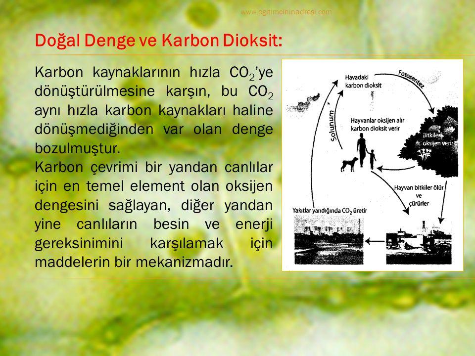 Karbon kaynaklarının hızla CO 2 'ye dönüştürülmesine karşın, bu CO 2 aynı hızla karbon kaynakları haline dönüşmediğinden var olan denge bozulmuştur.