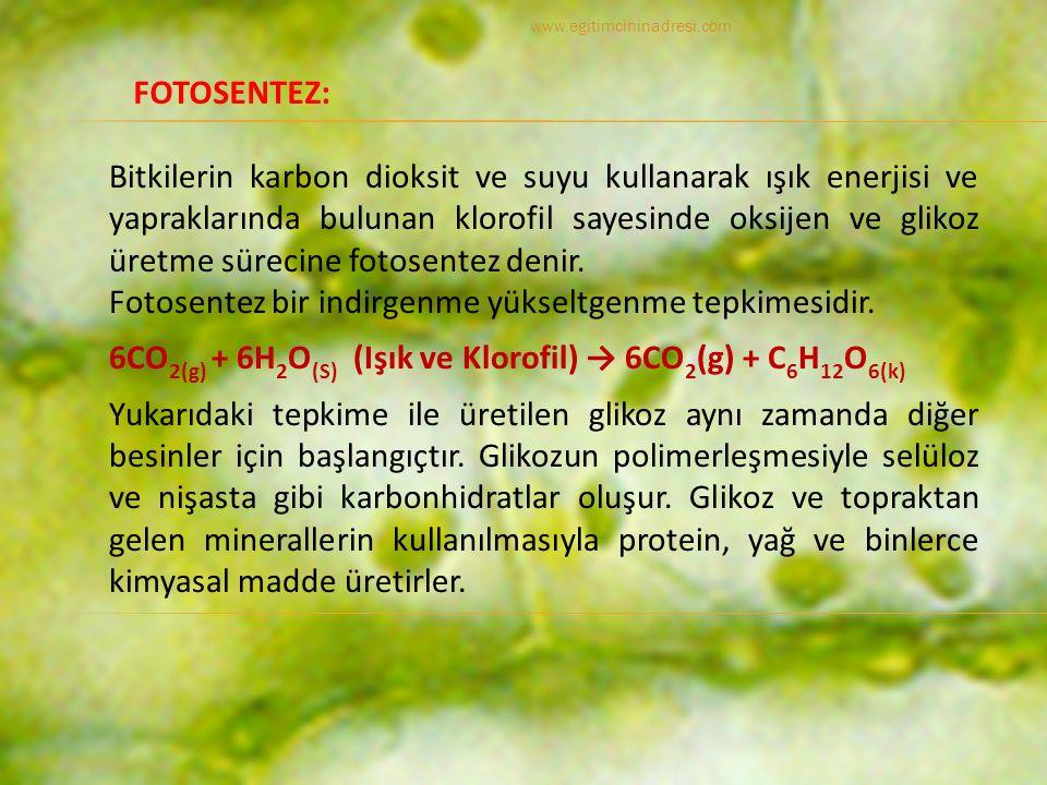Bitkilerin karbon dioksit ve suyu kullanarak ışık enerjisi ve yapraklarında bulunan klorofil sayesinde oksijen ve glikoz üretme sürecine fotosentez denir.